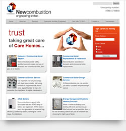 Newcombustion Engineering